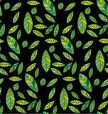 Μαύρα πράσινα φύλλα υποβάθρου Στοκ φωτογραφίες με δικαίωμα ελεύθερης χρήσης