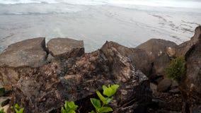 海 免版税库存照片