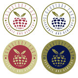 葡萄酒标记莓和黑莓农场 免版税图库摄影