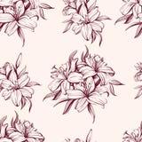 Флористический зацветая эскиз иллюстрации вектора предпосылки лилий нарисованный рукой Стоковые Фото