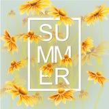 与绿色叶子花卉元素的橙色和黄色花 免版税库存图片