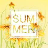 与绿色叶子花卉元素的橙色和黄色花 库存照片