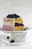 Пирог голубики с плавленым сыром и кокос шелушатся Стоковые Фотографии RF