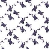 Косатка или дельфин-касатка Безшовная картина акварели Стоковые Изображения RF