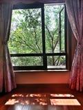 солнечные окна Стоковые Изображения