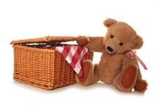 玩具熊野餐 库存照片