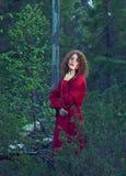 妇女神秘的森林 免版税库存图片