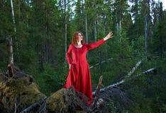 妇女神秘的森林 免版税图库摄影