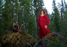 妇女神秘的森林 库存照片