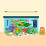 Садок для рыбы, аквариум с водой, животными, водорослями, кораллами, оборудованием Стоковое Изображение RF