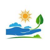 保存自然商标的一棵植物 免版税库存图片