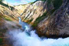峡谷全部河黄石 免版税图库摄影