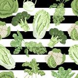 无缝的样式用在白色和黑背景的品种圆白菜 免版税库存照片