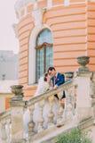 在台阶的美好的典雅的年轻婚礼夫妇在公园 背景的浪漫古色古香的宫殿 图库摄影