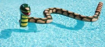蛇孩子的水池特点 图库摄影