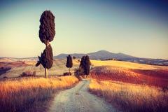 Красивый ландшафт в Тоскане Стоковое Фото