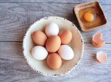 Καφετιά και άσπρα αυγά στο άσπρο κύπελλο και το σπασμένο αυγό Στοκ Φωτογραφίες