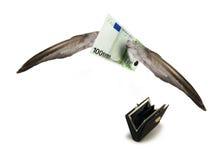 отсутствующее летание евро Стоковое Фото