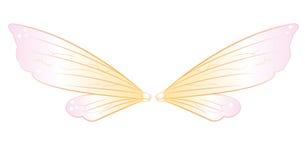 神仙的翼 免版税库存图片