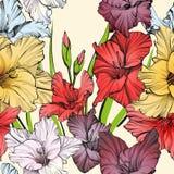 Абстрактная флористическая зацветая иллюстрация вектора текстуры предпосылки гладиолуса нарисованная рукой Стоковые Изображения RF