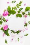 Красочная яркая картина сделанная из цветков Стоковые Фото