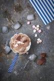 Домодельное мороженое ванили и шоколада с зефиром, подачей Стоковая Фотография RF