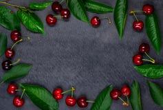 Τα κεράσια και τα φύλλα αντιγράφουν το διαστημικό πλαίσιο Στοκ Φωτογραφίες