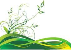 весна предпосылки флористическая Стоковое Изображение RF