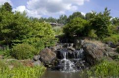 Природный парк с водопадом Стоковая Фотография RF