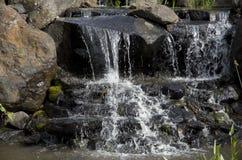 Природный парк с водопадом Стоковое Фото