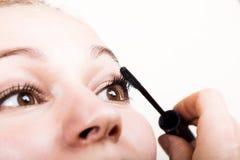 美好的少妇睫毛引伸 与长的睫毛的妇女眼睛 美容院概念 库存图片