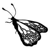 Πεταλούδα, μονοχρωματικό, χρωματίζοντας βιβλίο, γραπτή απεικόνιση Στοκ Εικόνες