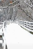 路径多雪的冬天 库存图片