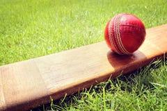 Крикетная бита и шарик Стоковое Изображение RF