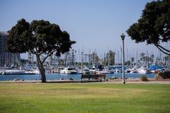 小船和港口在圣地亚哥,加利福尼亚 库存照片