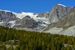 峰顶和冰川在策马特附近 图库摄影