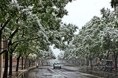 驾车在路在雪风暴期间 免版税库存图片