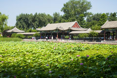 Азия Китай, Пекин, летний дворец, павильон, галерея, пруд лотоса Стоковые Фотографии RF