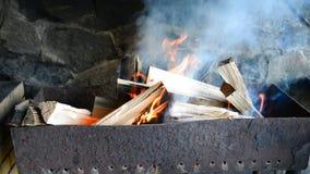 烧为烤肉的火 股票录像