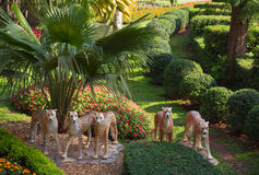 豹子装饰在热带庭院里 免版税库存图片