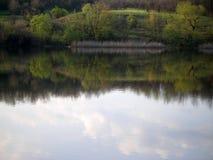 在青山和高大的树木附近的湖 免版税库存照片