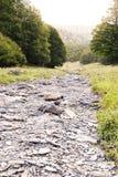 ξηρασία Στοκ φωτογραφία με δικαίωμα ελεύθερης χρήσης