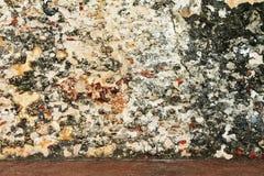 Αρχαίος ξεπερασμένος τοίχος Στοκ Εικόνες