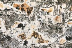 Φορεμένη πέτρα Στοκ εικόνες με δικαίωμα ελεύθερης χρήσης