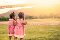 获得儿童两的小女孩看起来的乐趣动物在农场 免版税库存照片