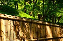 Бамбуковая загородка японского сада, Киото Японии Стоковое Изображение