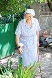 工作在庭院里的资深妇女 免版税库存照片