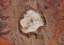 在自然的玛瑙群 图库摄影