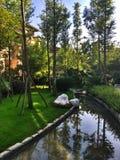 Κήπος σπιτιών Στοκ Εικόνες