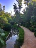Κήπος σπιτιών Στοκ Φωτογραφία